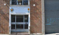 Federación Colombófila Catalana de Palomas Mensajeras