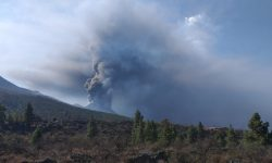 La Palma, en plena actividad del volcán de Cumbre Vieja, su delicada situación y su valiosa colombofilia